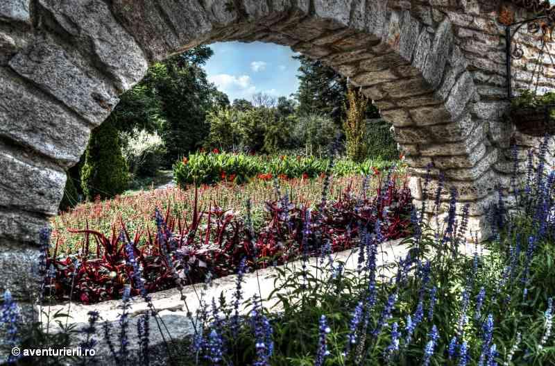 Balcic Garden1